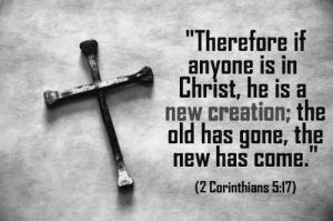 new_creation (1)