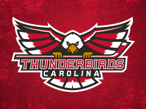 thunderbirds_dribbble_mockup_small